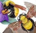 2  bees on stamp